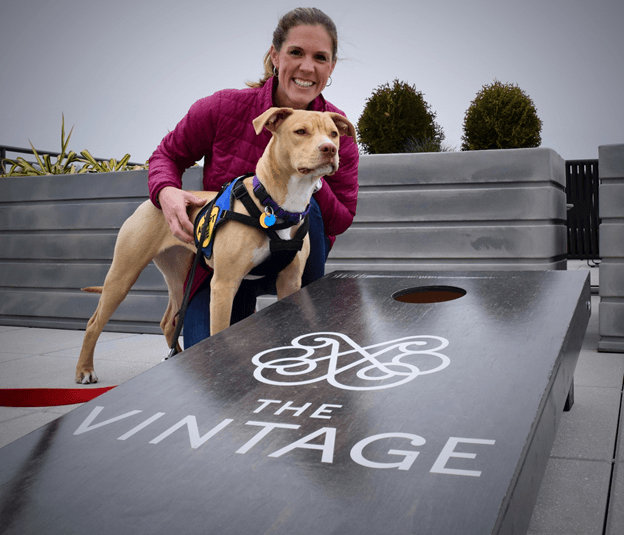 Dog-friendly communities around our Daro apartments in Washington, DC