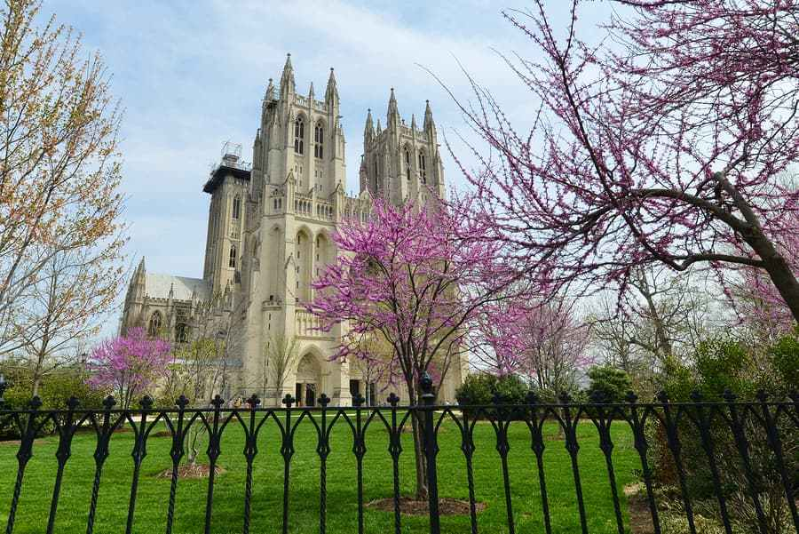 Cathedral in Washington, DC