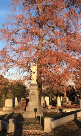 The Glenwood Cemetery