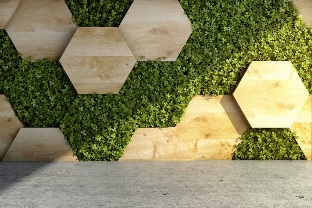 vertical garden grows among hexagonal tiles