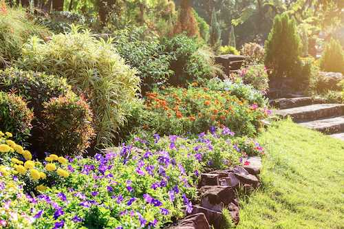 nature walks and gardens in cathedral heights