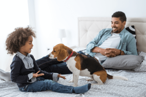 pet-friendly apartments in DC