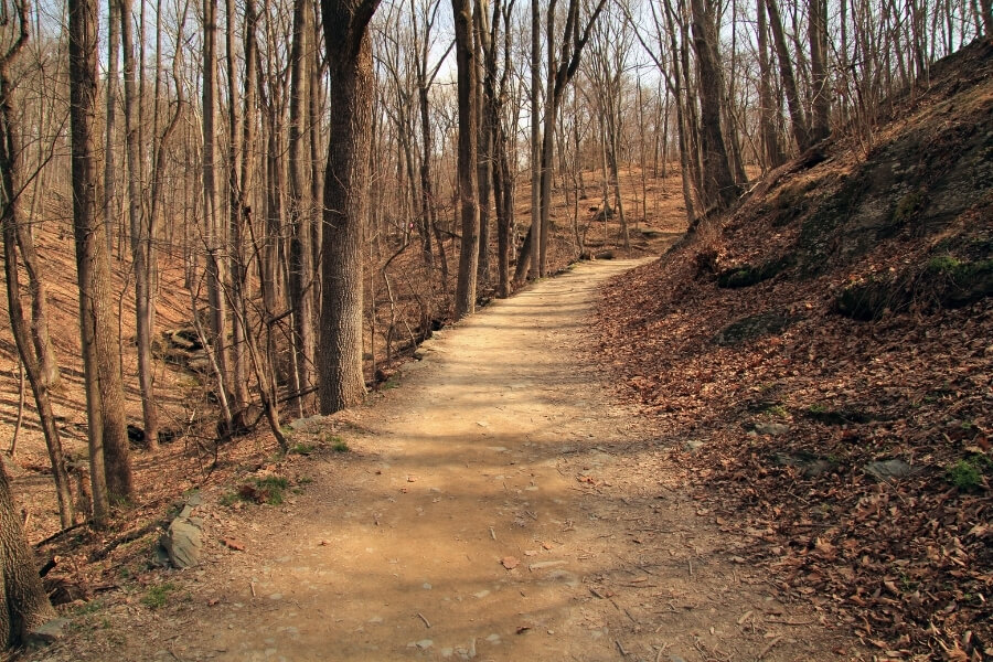 Wesley Heights Trail