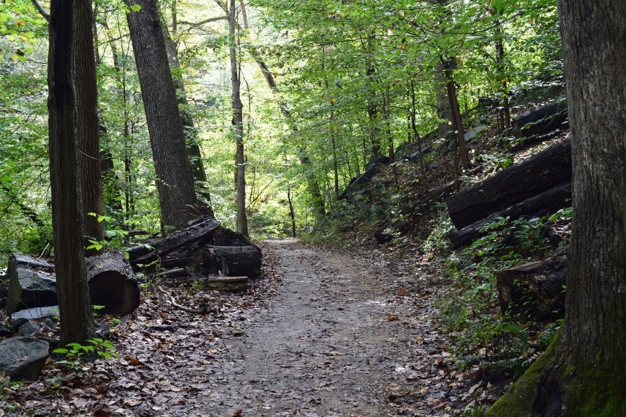 Rock Creek as one of the best places to run
